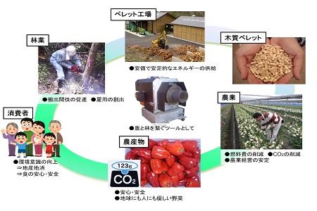 0112 木質バイオマス事業課のお仕事紹介